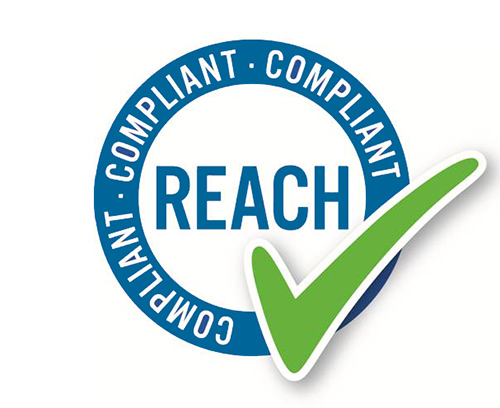REACH Statement
